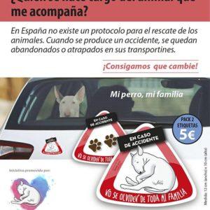 pegatinas pack solidarias bull terrier